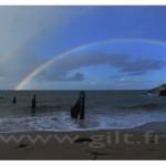 Gilt Paysages Mer N°: M44