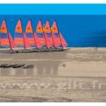 Gilt Paysages Mer N°: M42