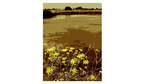 Gilt Paysages Mer N°: M31