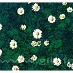 Gilt Fleurs et Plantes N°: FP04